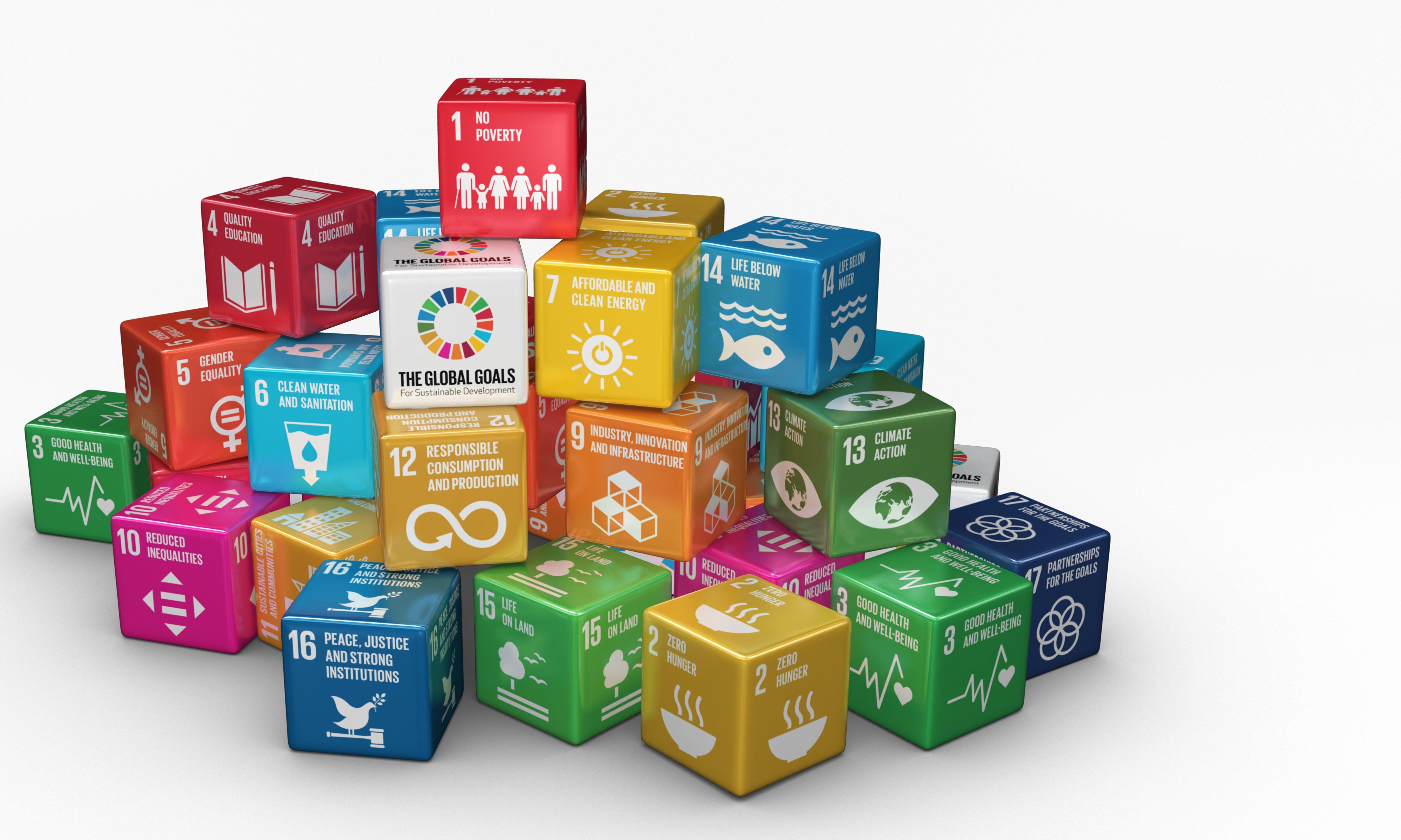FNs bærekraftsmål-Emballasje