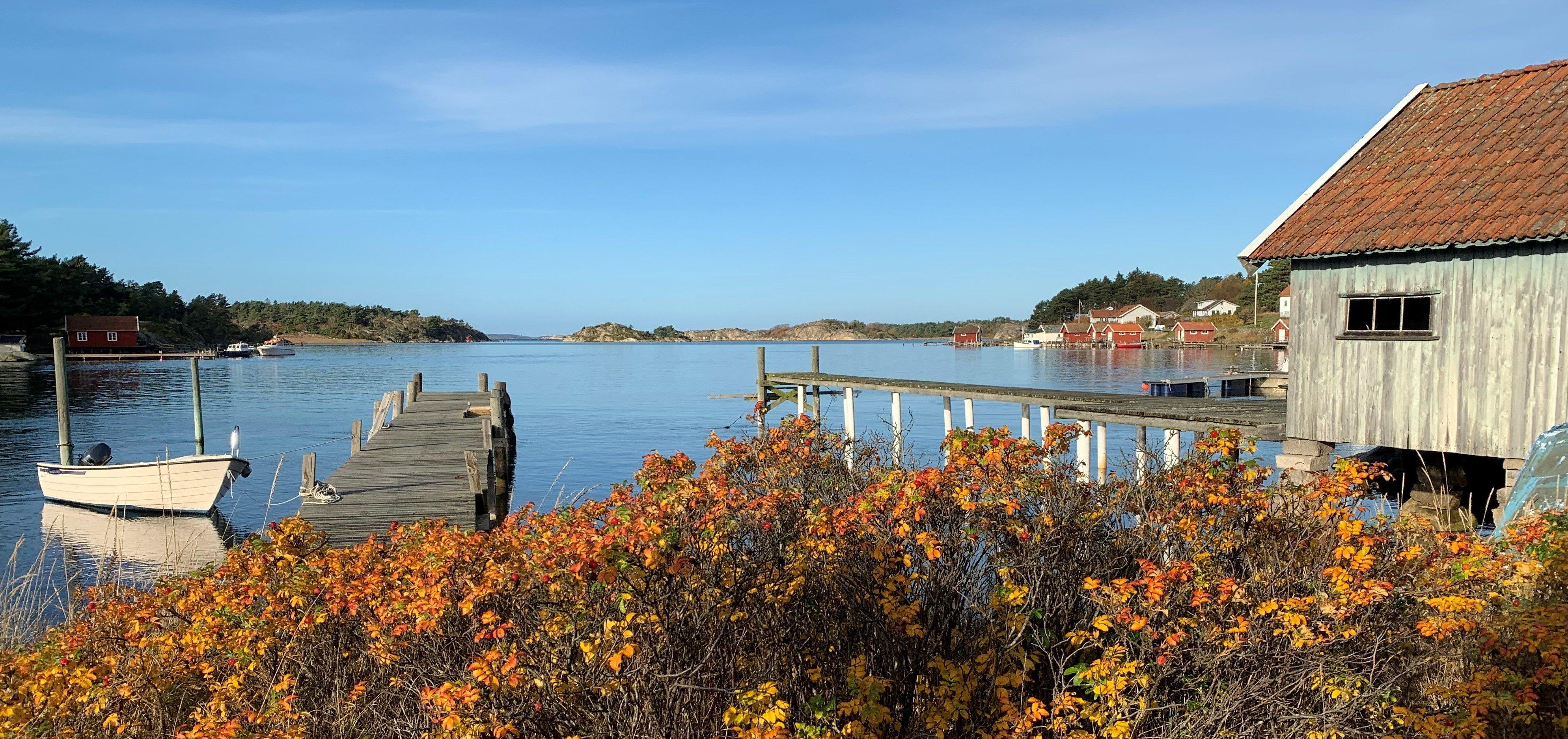 Tjärnö på hösten mindre Foto Julia Sandberg