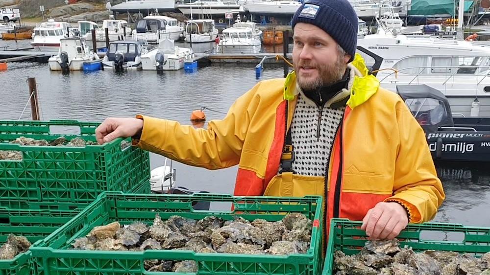 Bygger ny havsnæring med ressurser som ingen vil ha