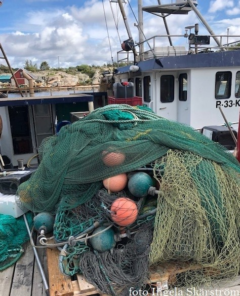 Företagsbesök med dialog om marin näringslivsutveckling i Skagerrak
